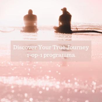 Discover Your True Journey 1-op-1 programma