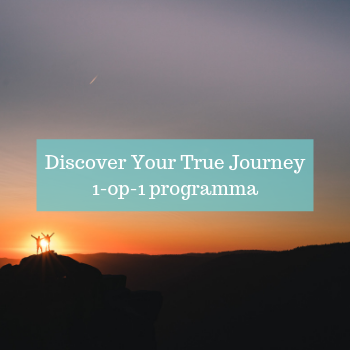 Discover Your True Journey 1-op-1 programma